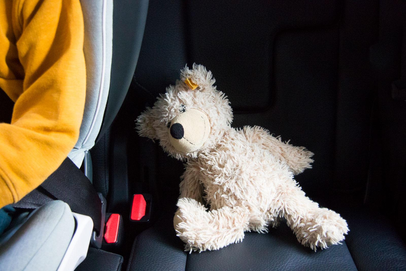 BeSafe Flex FIX car seat